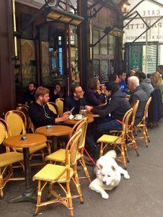 Focus On Paris: Paris unchanged