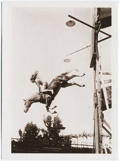 20 Incredible Vintage Photographs of Women Diving Horses in Atlantic City From the Early Century Art Et Illustration, Illustrations, Horse Diving, High Diving, Horse Information, All About Horses, Mundo Animal, Le Far West, Atlantic City