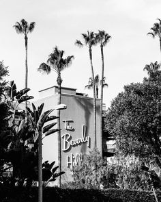 Retro Wallpaper Discover Beverly Hills Photography Black and White Los Angeles Print Los Angeles Print Palm Trees Beverly Hills Hotel Black and White Wall Art Black And White Picture Wall, Black And White City, Black And White Aesthetic, Black And White Pictures, Grey Pictures, White Aesthetic Photography, Black And White Photography, Yellow Photography, Asian Photography
