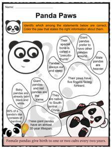 Panda Facts, Worksheets, Diet, Habitat & Historic Information For Kids Panda Habitat, Bear Habitat, Kindergarten Math Worksheets, Worksheets For Kids, Kindergarten Rocks, Panda Facts For Kids, Panda Information, China Facts, Panda Day