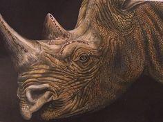 Rhinoceros (page 39) by Jo Warren