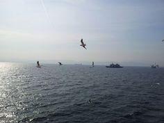 (1) Facebook=Marmara Sea