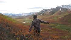 What is Wilderness Therapy? And does it work?