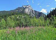 #hiking Heart Mountain in #Kananaskis #Alberta #Canada