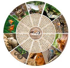 Material zum Thema Haustiere
