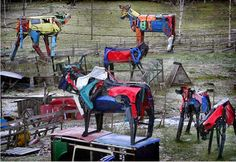 Miina built huge cows metal sculptures made out from used car trash bumper body