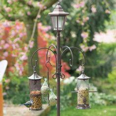 Solar Bird Feeder Outdoors
