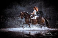 Des chevaux et des hommes - Crindoeil Photographie Equine Horse Water, Water Photography, Cute Animals, Baroque, Beautiful, Horses, Horse Photography, Horse Love, Beautiful Horses