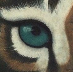 """""""Eye of the Tiger"""", pastel on board."""