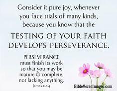 Bible Verse about Faith