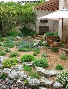 Simple Xeriscape Designs | amazing casual easy going xeriscaped backyard