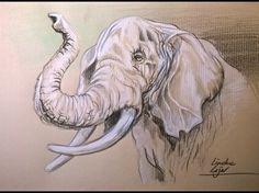 Hoe teken je een Olifant / dieren tekenen / #33  Ik heb dit filmpje gekozen, omdat deze mevrouw heel goed voor doet hoe je een olifant kan tekenen. Deze stappen heb ik ook gevolgd voor het hoofd en de slurf.
