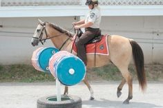 Mounted patrol competition is always a treat