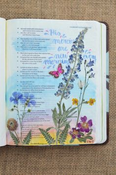 Lamentations 3:22-24, August 26, 2017 Carol@Belleauway.com Faber Castell Pitt Artist brush Pen, dried pressed wildflowers, Art Basics clear matte gesso, watercolor, die cut butterfly, Bible Art Journaling, Journaling Bible, Illustrated Faith