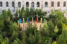 Call the copse! The sudden flourishing of culture about trees | Stage | The Guardian Forest Path, Tree Forest, House Slide, Richard Powers, Tree Base, Park In New York, White Cedar, Pear Trees, The Guardian