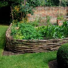 Wattle fence (Woven Branches) for vegetable garden