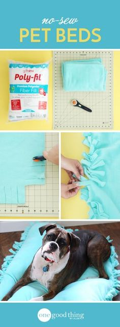 No need to spend your hard-earned money on expensive pet beds. This cute and comfy DIY bed is inexpensive AND doesn't require any sewing!