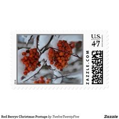 Red Berrys Christmas Postage