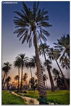 Alhasa, Saudi Arabia: