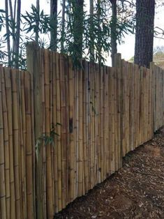 A rustic fence can be built on your homestead from almost any type of material. You may even want to make a bamboo fence as a DIY project for the weekend.
