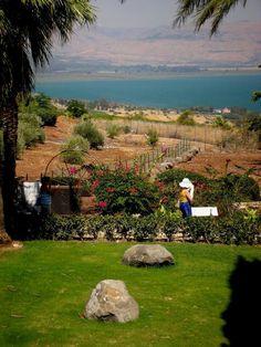 Kinneret (Sea of Galilee), Israel ~My Holy Land-Spain-Portugal Trip 2013 Beautiful Sites, Beautiful Places, Terre Promise, Sea Of Galilee, Israel Travel, Israel Trip, Israel Palestine, Promised Land, Holy Land