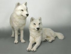 life size white wolf toys i am winter the standing up one alpha and my sister is the wolf you would naturally think of she is lyein down omega