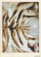 "Gallery.ru / Chispitas - Альбом ""2007 02"""