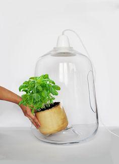 Una de las últimas creaciones del estudio de diseño polaco Lightovo es Milo, una lámpara de suspensión con pantalla de cristal que, además, proporciona luz adicional a las plantas que acoge en su interior.