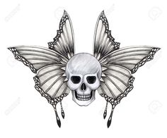 Find Skull Wing Tattoo Hand Drawing On stock images in HD and millions of other royalty-free stock photos, illustrations and vectors in the Shutterstock collection. Skull Tattoos, Body Art Tattoos, Tattoo Drawings, Hand Tattoos, Pencil Drawings, Skull Butterfly Tattoo, Butterfly Drawing, Butterfly Images, Crane