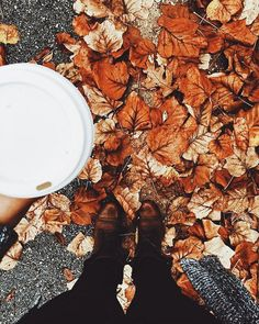 Fall leaves are the prettiest