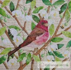 """The Purple Finch Block pattern, 9.75"""" square block, by Sandra Leichner  The Naturalist's Notebook Series Quilt - applique cotton embroidery birds realistic AWESOME"""