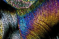 Beverages under the microscope by Michael Davidson: Gin