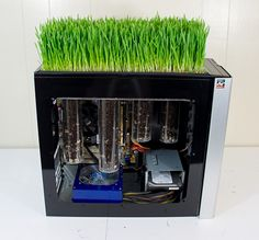 Bio computer grows wheatgrass using its own heat - Mike Schropp took donated computer parts and built a computer with a mini garden on top of its case. It's actually a working computer, and yes, it grows wheatgrass. | #BioComputer #GoingGreen #Technology |