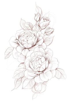 Stock vector of 'beautiful monochrome black and white dahlia… – Tattoo Designs Dahlia Tattoo, Peony Flower Tattoos, Flower Tattoo Drawings, Flower Tattoo Designs, Dahlia Flower, Carnation Flower Tattoo, Rose Drawing Tattoo, Flower Tattoo Hand, Tattoo Roses