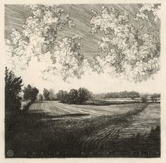 """Two Fields,"" 5 x 5 in, Pencil, 2013 by Taylor Mazer"