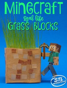 DIY Real Minecraft G