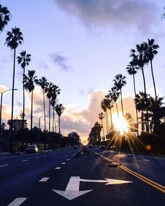 How can you not instantly fall in love with this? Drove through here for a week and it never got old.    Photo: Abbot Kinney Blvd @kidfuture_ #LostInLA