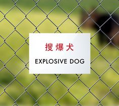 Items similar to Funny Dog Sign Fail. Chinese Humor for Little Poop Machines. Explosive Dog on Etsy