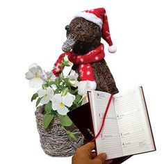 Penguin Planter with White Pansies with Diary Beautiful Floral Planters to give your garden a Festive Touch Height 33cm (13). Materials: Metal and Coco Fibre. This festive Penguin Planter has already planted up for you, with seasonal white Pansie http://www.MightGet.com/january-2017-11/penguin-planter-with-white-pansies-with-diary.asp