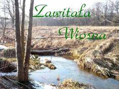 Zwiastuny wiosny - rozpoznajemy wiosenne kwiaty/ Wiosna - Antonio Vivaldi - lekcja dla dzieci - YouTube