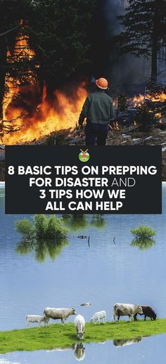 8 Basic Tips on Prepping for Disaster on Your Homestead