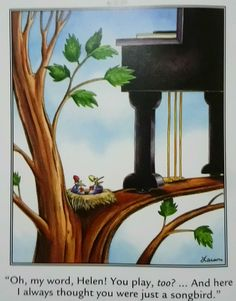 Far Side Cartoons, Far Side Comics, Funny Cartoons, Gary Larson Cartoons, The Far Side, Twisted Humor, Wtf Funny, Comic Strips, Cool Pictures