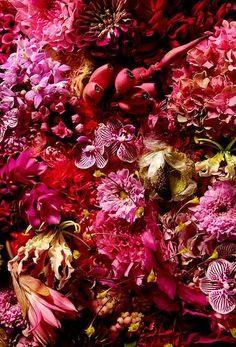 Jardin des Fleurs is a Tokyo florist owned by floral artist Makoto Azuma and Shunsuke Shiinoki Colorful Flowers, Pink Flowers, Beautiful Flowers, Azuma Makoto, Flora Botanica, Flower Installation, Midnight Garden, Special Flowers, Art Sculpture