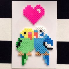 Budgies, Hama beads and Beads on Pinterest