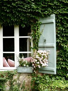Shutters set against an ivy covered wall have a storybook feel.