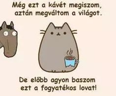 Fashion, wallpapers, quotes, celebrities and so much Pusheen Cat, Funny Cats, Psychology, Lol, Coding, Wallpaper, Celebrities, Memes, Quotes