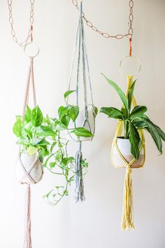 ✨Best Friends Forever✨ Join one of our Online + Pay What You Can Workshops with a friend and we'll send you and them a free SN mini candle of your choice!  ✨ Sunday 8.23 - Macrame Plant Hangers #1 ✨ Saturday 8.29 - Mindful Wall Macrame #1 ✨ Sunday 8.30 - Macrame Plant Hangers #2  Spots are limited, so make sure to reserve your seat!  (📸: @theaquariust)   #slownorth #theaquariust#makersgonnamake #workshops #calledtobecreative #madeintexas #atx #austinworkshops #workshops