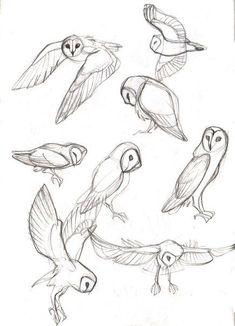 40 kostenlose und einfache Tierskizze, Ideen und Inspiration beim Zeichnen - Drawing Tips easy animals to draw Bird Drawings, Art Drawings Sketches, Cool Drawings, Sketch Drawing, Drawing Ideas, Drawing Tips, Simple Animal Drawings, Anatomy Sketches, Animal Sketches Easy