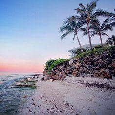 La Floride ou « Sunshine State » regorge de plages majestueuses au longue étendue de sable fin. On connait principalement la célèbre plage de Miami Beach mais ce n'est qu'un infine échantillon de l...