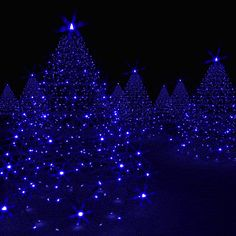 Discover & share this Animated GIF with everyone you know. GIPHY is how you search, share, discover, and create GIFs. Christmas Tree Gif, Xmas Gif, Holiday Gif, Christmas Scenes, Merry Christmas And Happy New Year, Blue Christmas, Christmas Pictures, Beautiful Christmas, Winter Christmas